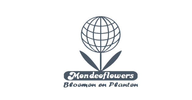 Collective IT maakt catalogus-websites in WordPress. Net zoals de prachtige website van Mondeoflowers in Genk. Uw florist / bloemenspecialist op de Vennestraat!
